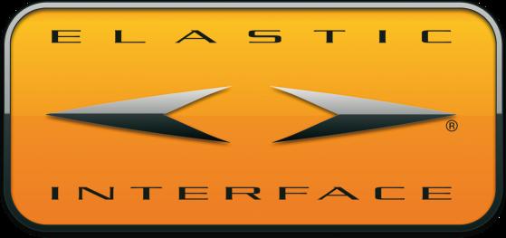 ElasticInterface%20Logo.png